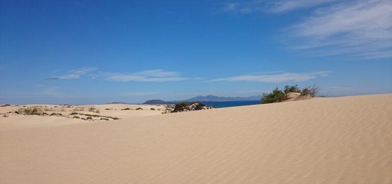 corralejo-landscape